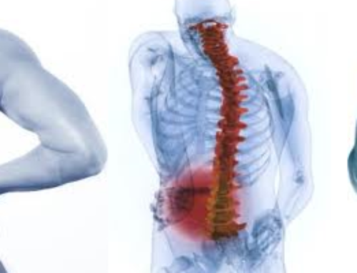 What are the Common Back Spasm Causes?