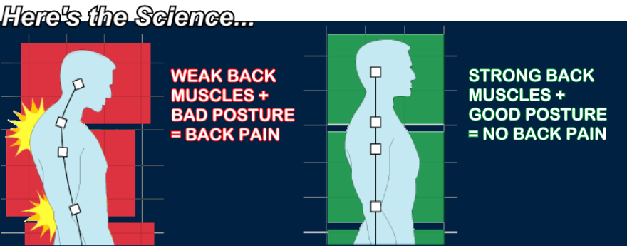 Middle Back Pain Related Keywords