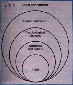 Figure 2: Biopsychosocial model of low back pain and disability.
