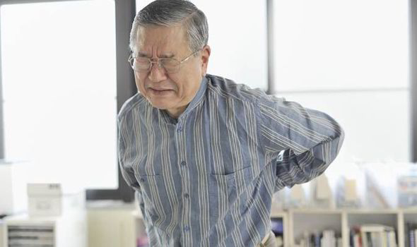 Back pain is set to get worse as population ages - Health - Life ...