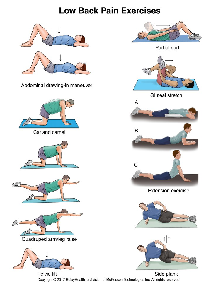 Resources - Conditions - Low Back Pain Exercises: Illustration