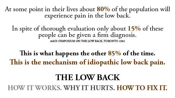 BACK PAIN Quotes Like Success
