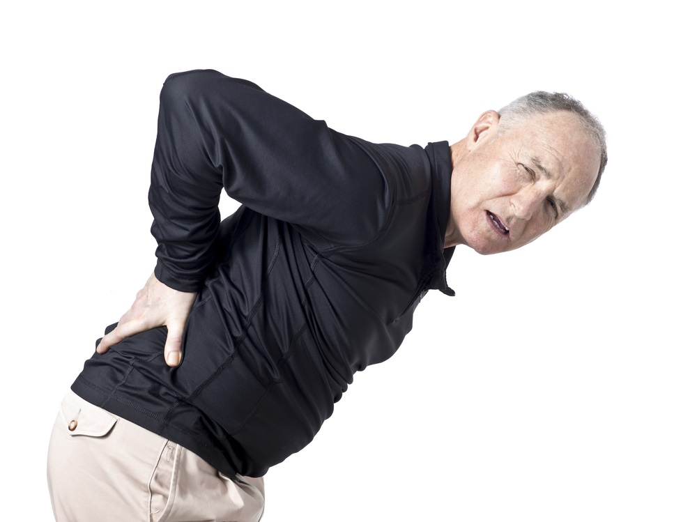 facet joint, low back pain, back pain, physical therapy, spinal column ...