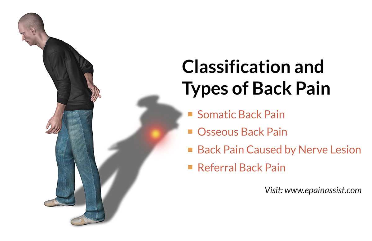 Classification and Types of Back Pain or Backache: Somatic, Osseous ...