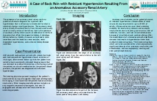 A case of back pain with resistant hypertension resulting from an anomalous accessory renal artery