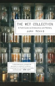 The Wet Collection: A Field Guide to Iridescence and Memory torrent downlaod
