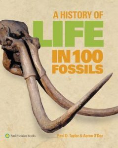 A History of Life in 100 Fossils torrent downlaod