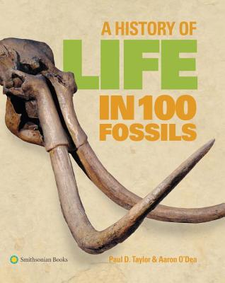 Download free pdf A History of Life in 100 Fossils