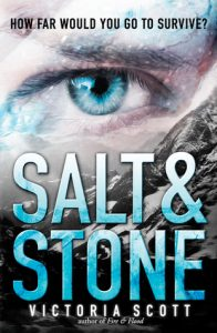 Salt & Stone  <small>(Fire & Flood #2)</small> torrent downlaod