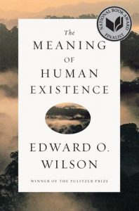 The Meaning of Human Existence torrent downlaod