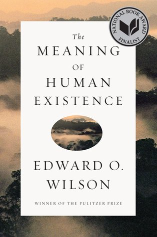 Download free pdf The Meaning of Human Existence