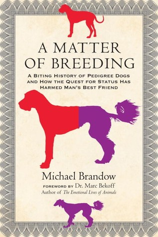 Download free pdf A Matter of Breeding: A Biting History of Pedigree Dogs and How the Quest for Status Has Harmed Man's Best Friend