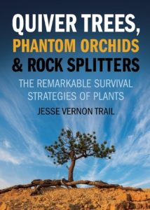Quiver Trees, Phantom Orchids and Rock Splitters: The Remarkable Survival Strategies of Plants torrent downlaod