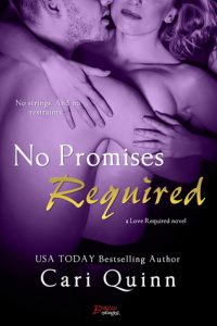No Promises Required  <small>(Love Required #4)</small> torrent downlaod