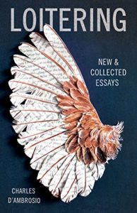 Loitering: New and Collected Essays torrent downlaod