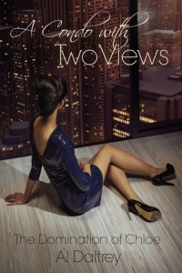 A Condo with Two Views torrent downlaod