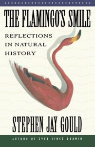 The Flamingo's Smile: Reflections in Natural History  <small>(Reflections in Natural History #4)</small> torrent downlaod