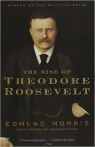 The Rise of Theodore Roosevelt  <small>(Theodore Roosevelt #1)</small> torrent downlaod