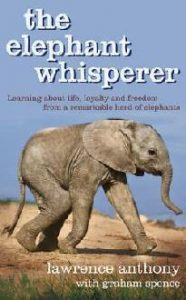 The Elephant Whisperer torrent downlaod