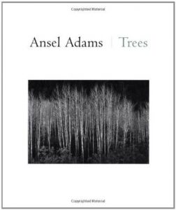 Ansel Adams: Trees torrent downlaod