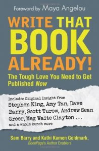 Write That Book Already!: The Tough Love You Need to Get Published Now torrent downlaod