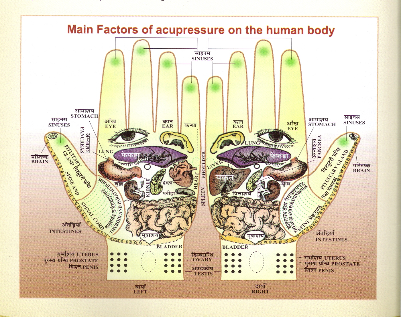 Acupressure Healing, Alternative Treatment for Chronic Disease, India ...
