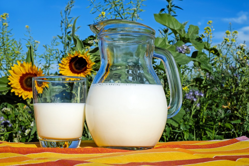Milk, Glass, Frisch, Healthy, Drink